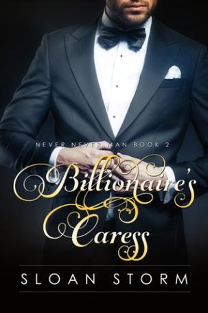 Billionaire's Caress Cover