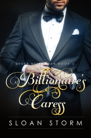 Billionaire's Caress Cover