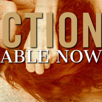 Friction (A Legal Affairs Novel) by Sawyer Bennett